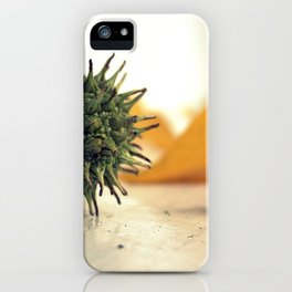 Sweet Gum Fruit Still Life iPhone Case