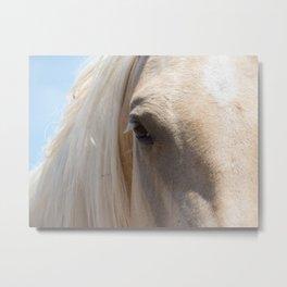 Palomino Horse Face Metal Print
