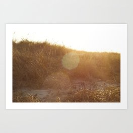 Montauk Sand Dune Sunflare Art Print