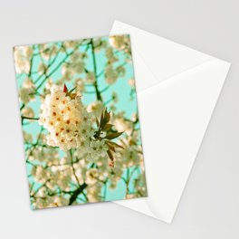 White Spring Love Stationery Cards