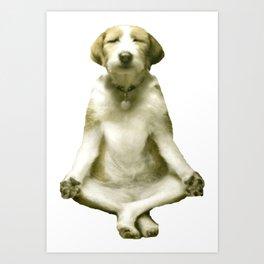Yoga Dog Art Print