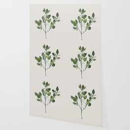 Eucalyptus Branch Wallpaper