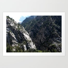 Little Cottonwood Art Print