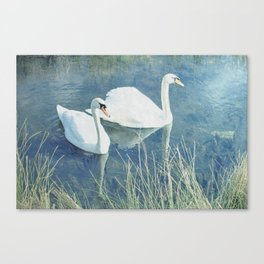 Royal Birds Canvas Print
