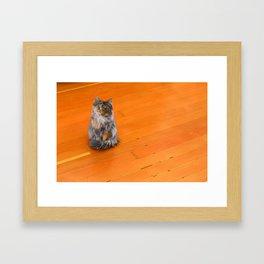 Wylla Stout Sitting Pretty Framed Art Print