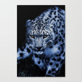 BEYOND BEAUTY Canvas Print
