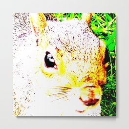 The many faces of Squirrel 1 Metal Print