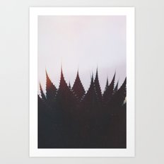 Evening Mood Art Print