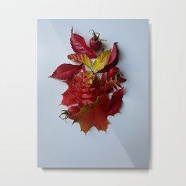 Pile of Autumn Metal Print