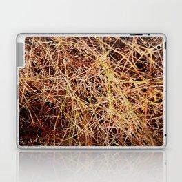 not really Laptop & iPad Skin