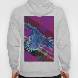 Arara-azul (Hyacinth Macaw) Hoody