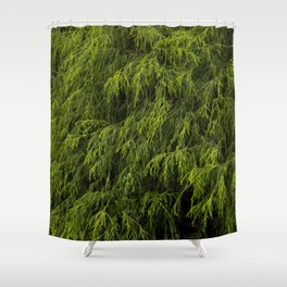 Evergreen Shrub Shower Curtain