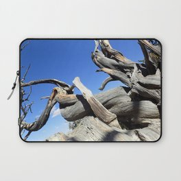 Trees and sky Laptop Sleeve