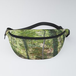Panoramic view of the ocher lands in the natural park Fanny Pack