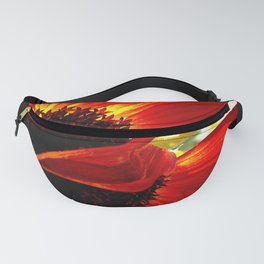 Red daisy close-up photo | Inspire Fanny Pack