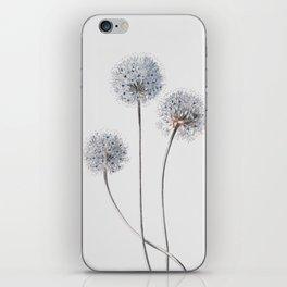 Dandelion 2 iPhone Skin