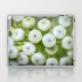 Wht-flowered Milkweed Laptop & iPad Skin
