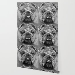 Bulldog Black and White Wallpaper