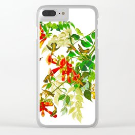 Ruby-throated Humming Bird Clear iPhone Case