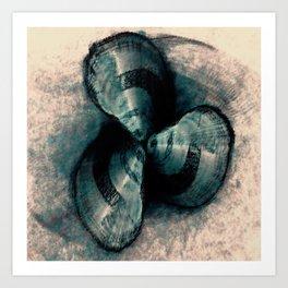 Shells in a row Art Print