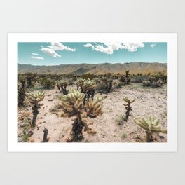 Super Bloom Cactus 7278 Art Print