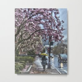First Spring Rain.  Boston, MA Metal Print