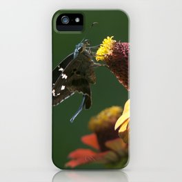 Longtail Skipper iPhone Case