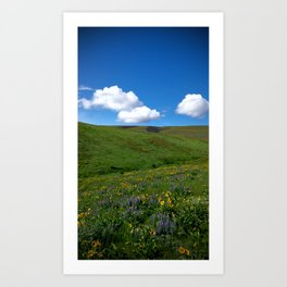 (#55) Spring Art Print