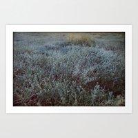 Grass & Sea Art Print