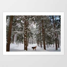 Dog exploring a snowy forest Art Print