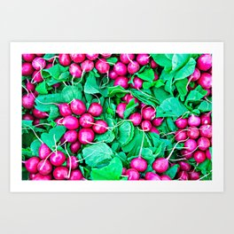 Red radishes and green leaves Art Print