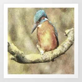Stunning Kingfisher In Watercolor Art Print