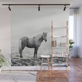 Horse in Icelandic Landscape Photograph Wall Mural