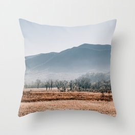 Peace in the Valley of Cades Cove Throw Pillow