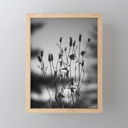 Black and White Photo: Twilight Garden 01 Framed Mini Art Print