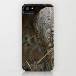 Th Urn iPhone Case
