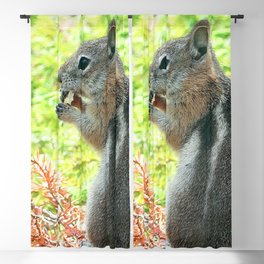 Watercolor Golden-Mantled Ground Squirrel 04, Ruffles Anyone? Blackout Curtain