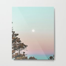 Rainbow Color Sunset // Incredible Clear Sky Photograph Through the Forest Trees Metal Print
