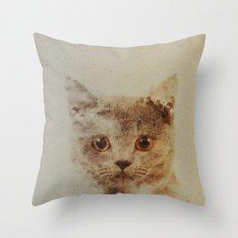 Cats: Portrait British Shorthair Throw Pillow