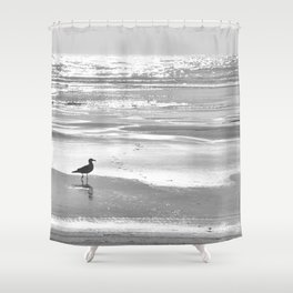 BIRDIE WALKING ON THE BEACH AT SUNSET - BLACK AND WHITE Shower Curtain