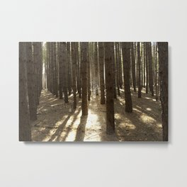 Surrounded by Wolves Metal Print