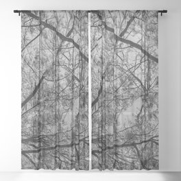 wooded Sheer Curtain