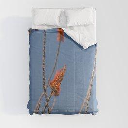 Ocotillo in Bloom Comforters