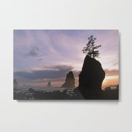 Cotton Candy Skies - Shi Shi Beach, WA Metal Print