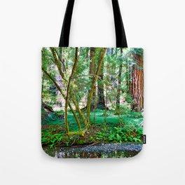 Muir Woods Study 11 Tote Bag