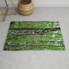 Sultry and Sunlit Rug