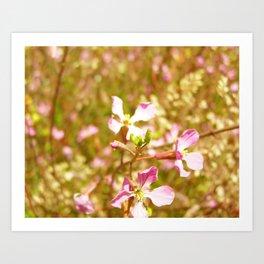 Fort Brag Flowers IV Art Print