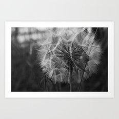 A Wish... Art Print