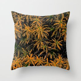 Lapa - SP Throw Pillow