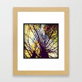 Tree close-up Framed Art Print